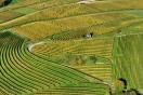불법 농업법인 떨고있니... 부동산 투기 특별 금융대응반 투기근절활동 활발